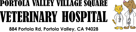 Village Square Veterinary Hospital